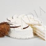 COCOS <br> crema de cocos, fruct de cocos, fulgi de cocos, blat de vanilie